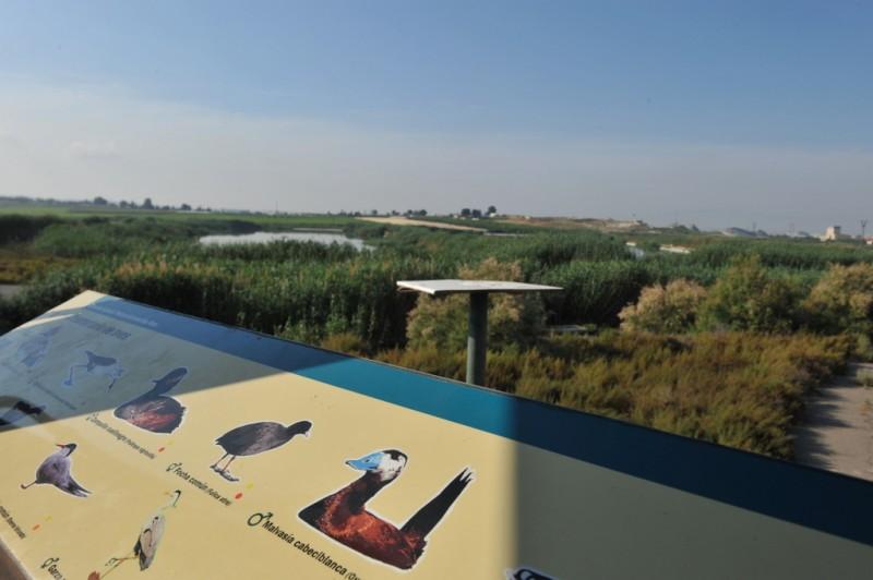 The protected wetlands of Lagunas de Campotejar in Molina de Segura