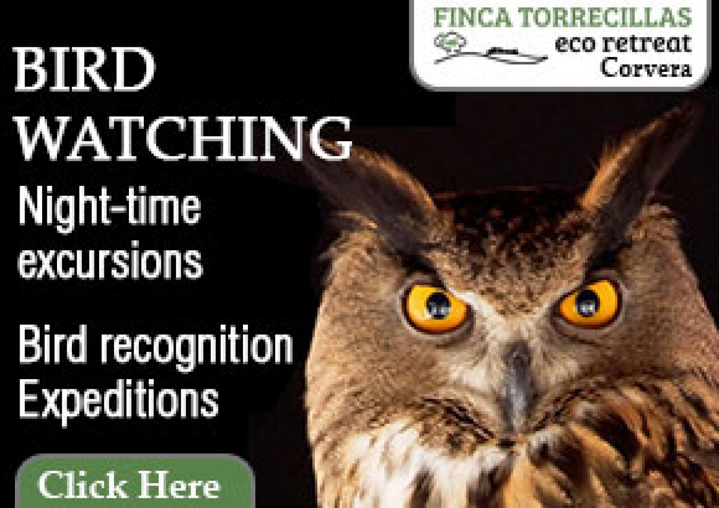 Finca Torrecillas Eco-activities, birdwatching, walking, Corvera