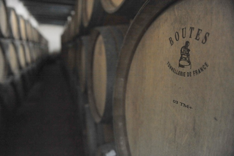 Bullas Wine Route: Bodega Balcona