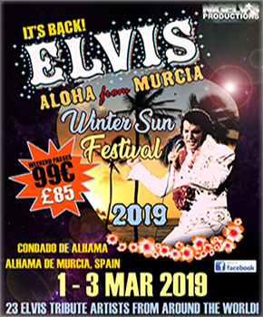 Elvis Winter Sun Festival Banner 2019.
